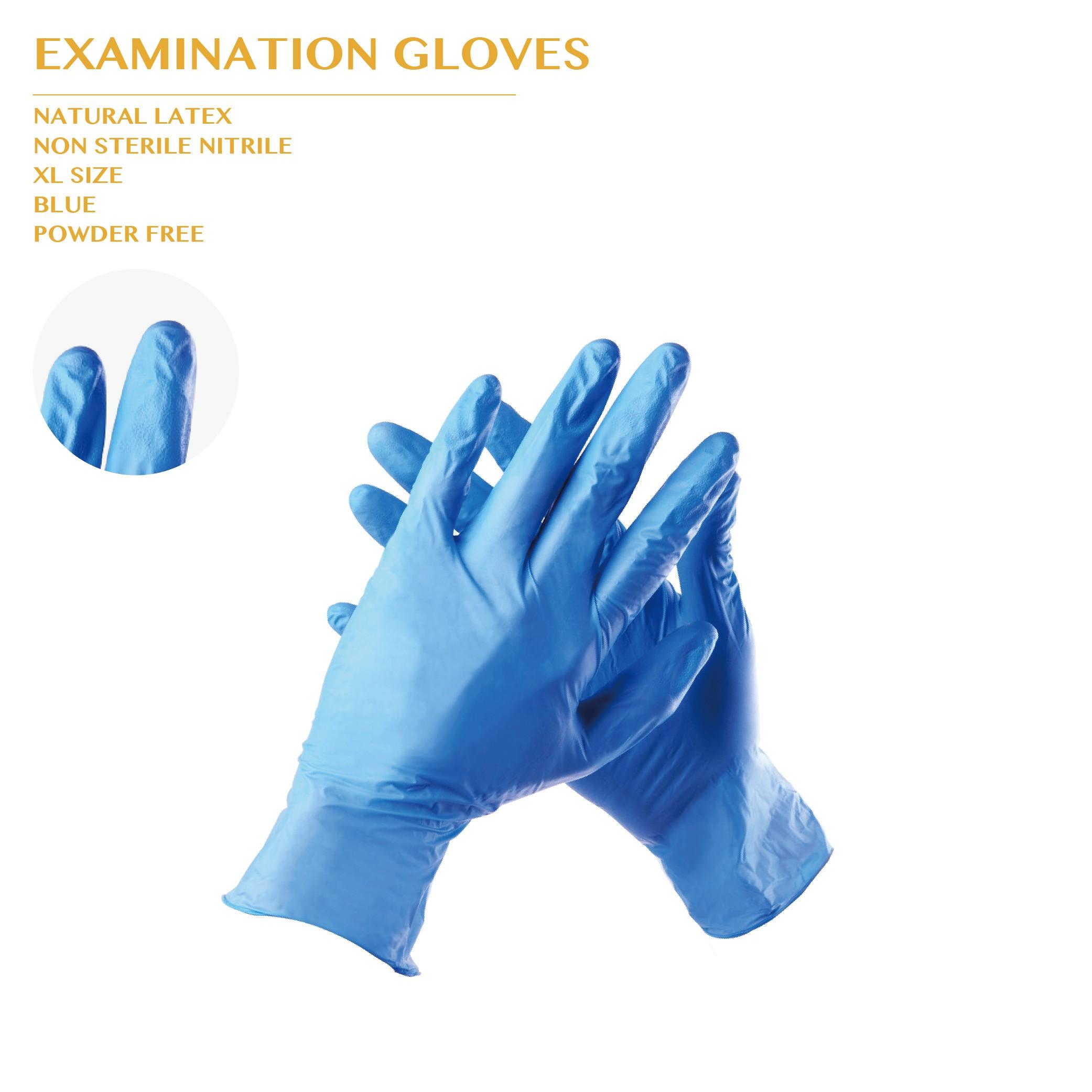 PRO-ORDER EXAMINATION GLOVES XL SIZE 10BOX/CTN